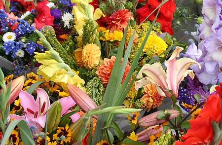 cut flower display