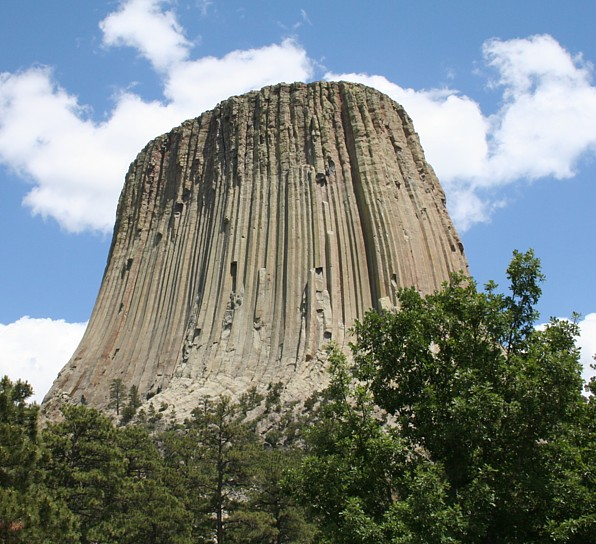 devils tower cougars dating site Devils tower was the first declared  columnar jointing can be found are the devils tower in wyoming, the devils postpile in california  cougar , cutthroat and.